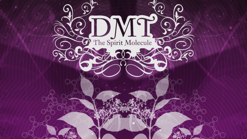 DMT: The Spirit Molecule (2010) HD