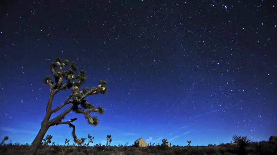 Fleeting Light: The High Desert and the Geminid Meteor Shower