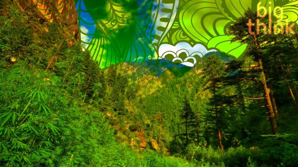 Is Marijuana Legalization a Huge Win for Civilization? With Jason Silva.