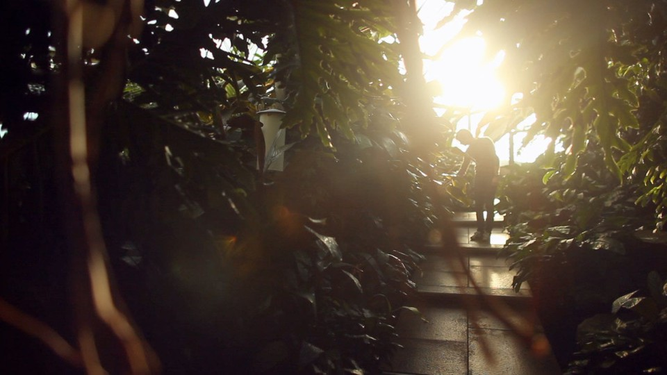 KEW GARDENS – Beyond the Gardens: The Fungarium