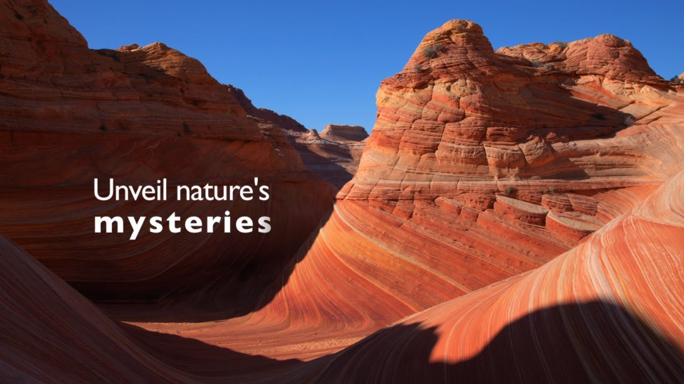 Nature's Wonders – Official Trailer