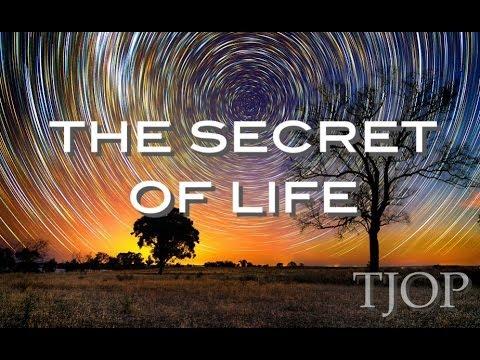 The Secret of Life – Alan Watts