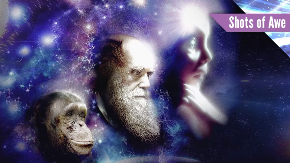 We Are An Evolutionary Force
