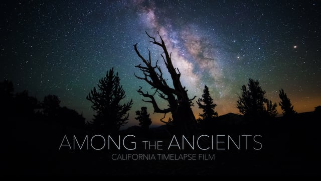 Among the Ancients – California Timelapse 4K