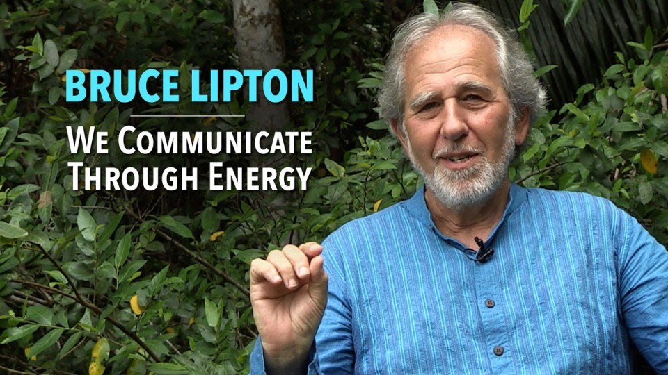 Bruce Lipton: We Communicate Through Energy