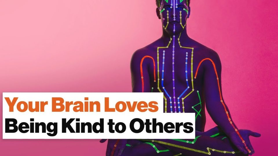 Your Brain Is Hardwired for Love—Meditation Helps You Fully Express It | Daniel Goleman