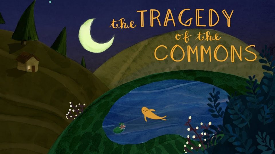 What is the tragedy of the commons? – Nicholas Amendolare
