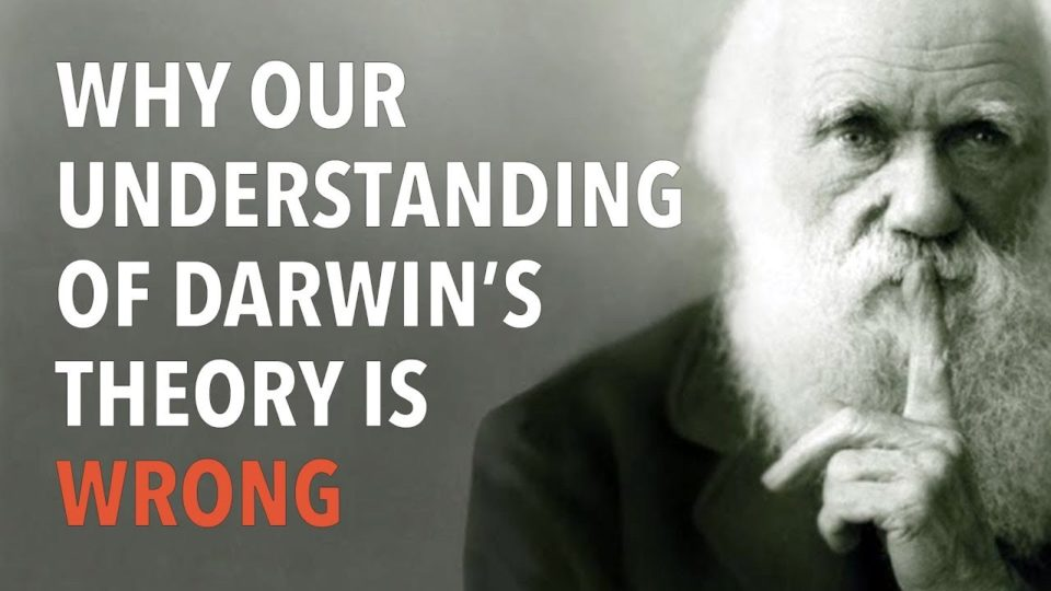 Why Our Understanding of Darwin's Theory is Wrong
