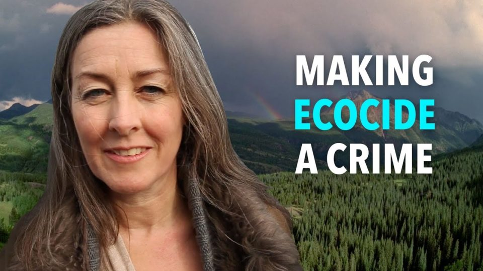 Making Ecocide a Crime
