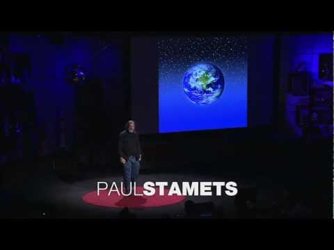 6 Ways MUSHROOMS Can SAVE the WORLD – Paul Stamets – TED awards -Talk, Lecture, Documentary