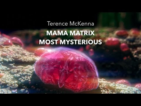 Terence McKenna – Mama Matrix Most Mysterious