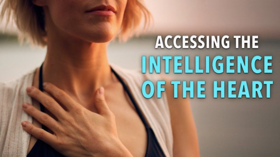 Accessing the Intelligence of the Heart